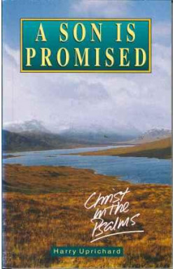 Son Is Promised: Christ in the Psalms