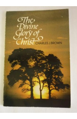 Divine Glory of Christ