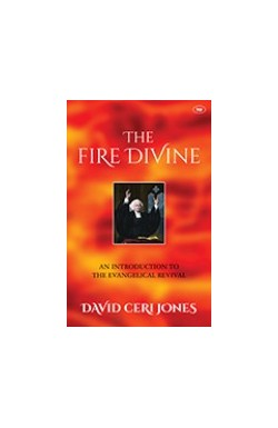 The Fire Divine - An Introduction to Evangelical Revival
