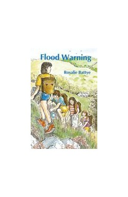 Flood Warning (THIRD BOOK - Summer Reading Challenge 2018)