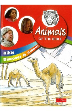 Bible Discover and Colour: Animals