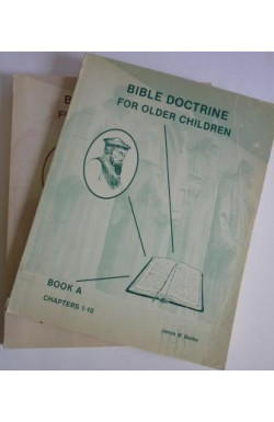 Bible Doctrine for Older Children (Books A & B)